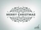 Christmas_2014_4